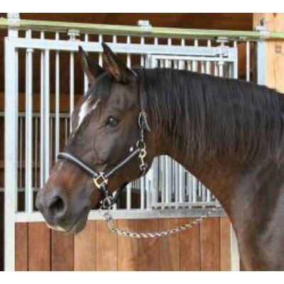 Mustang kötőfék fekete/ezüst 1