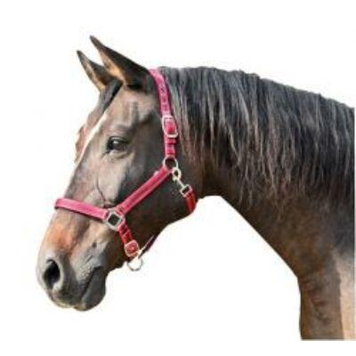 Mustang kötőfék piros/fekete 1