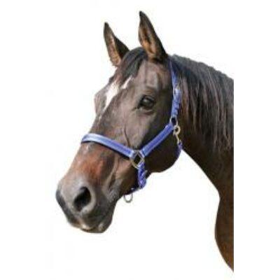 Mustang kötőfék kék/fekete 1