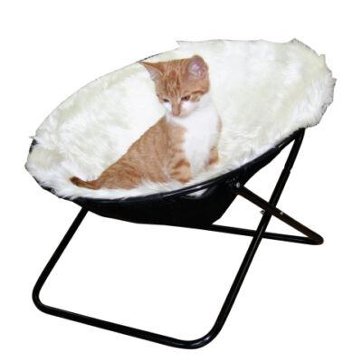 macska  fekvőhely,