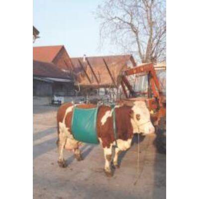 Szarvasmarha emelő 1000 kg-ig